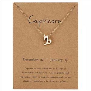 NEW!! ♑️ Capricorn Zodiac Sign Necklace